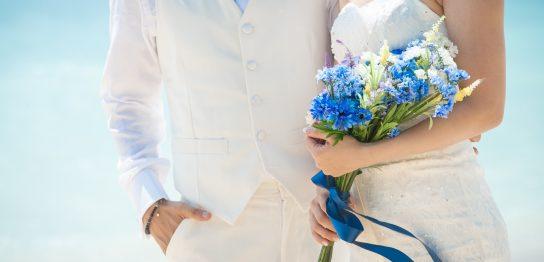 福岡の結婚調査